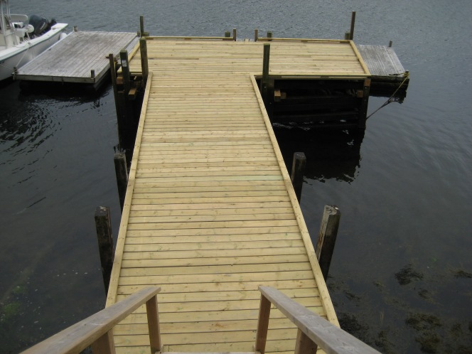 Pause and Consider the Micro-World that Thrives Around Your Dock